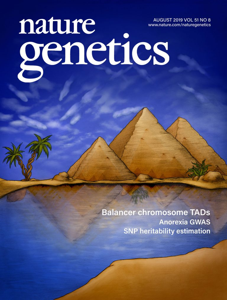 My Nature Genetics cover illustrating a rearranged genetic landscape!